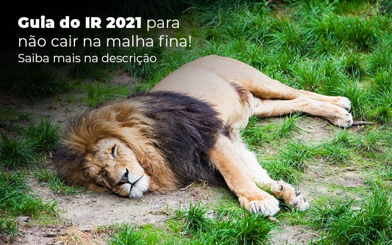 Guia Ir 2021 Para Nao Cair Na Malha Fina Saiba Mais Na Descricao Post (1) - Abrir Empresa Simples